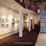 mostra fotografica a White Plains