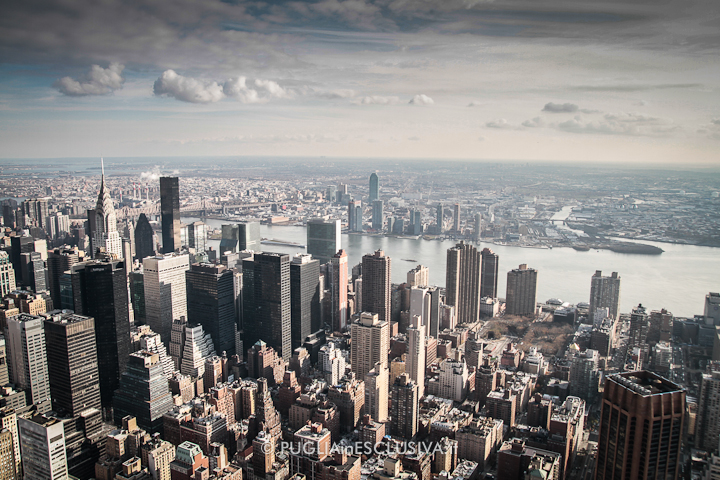 PUGLIAinESCLUSIVA a New York
