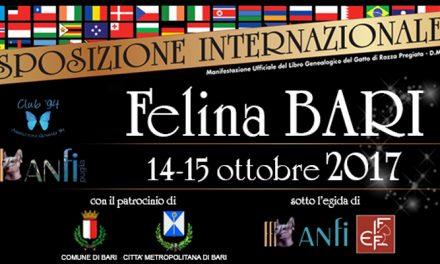 Esposizione Internazionale Felina Bari
